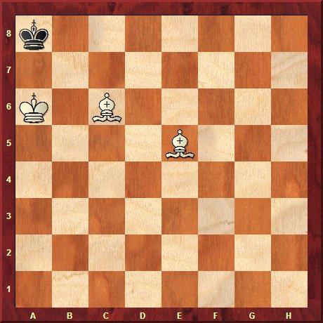 checkmate bishops